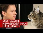 The new Spider-Man really, really hates cats