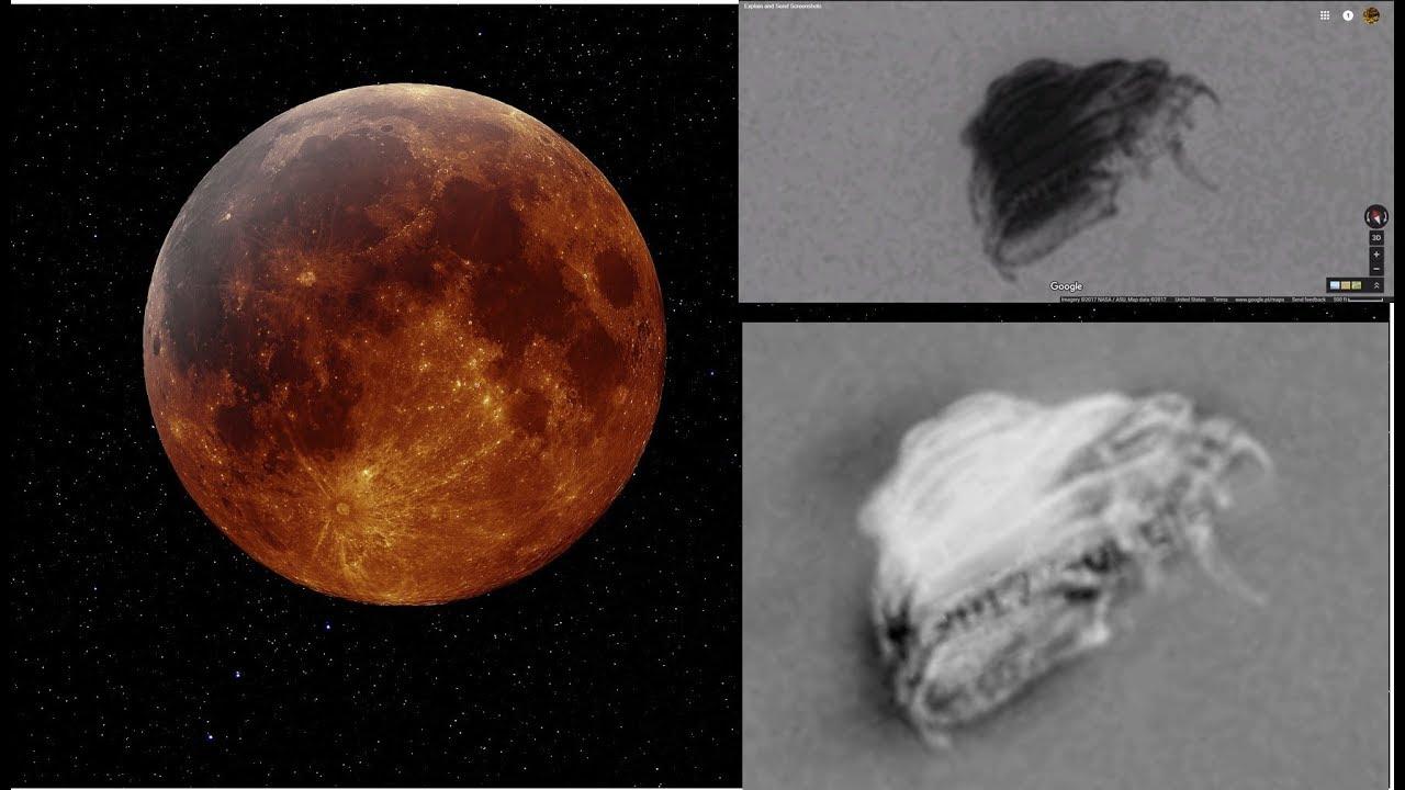 Huge Organic UFO on the Moon?