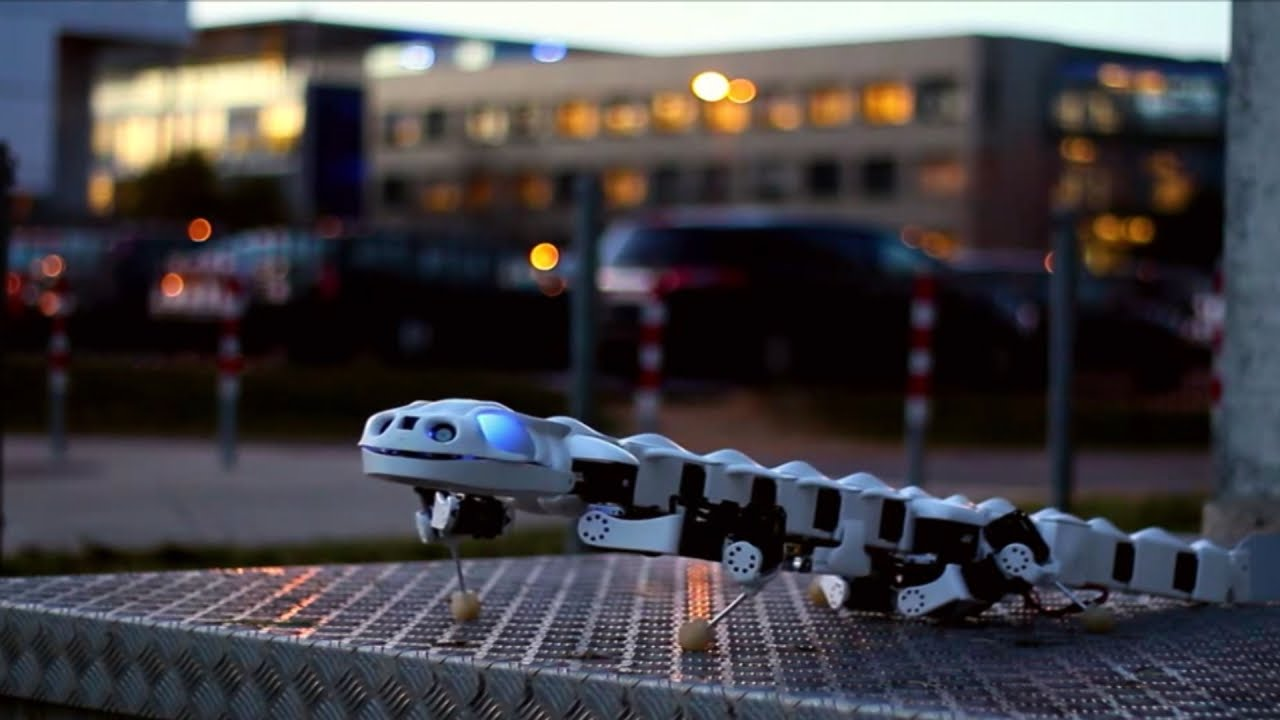 Salamanders Are Cool… Robots Are Cool… This Salamander Robot is Awesome!