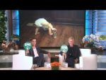 Chris Pine and Ellen Play Epic or Fail