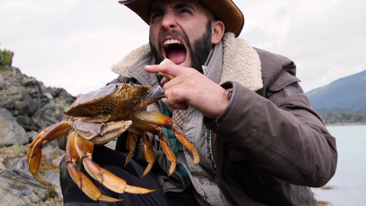Could You Withstand The Pinch Of A Dungeness Crab?