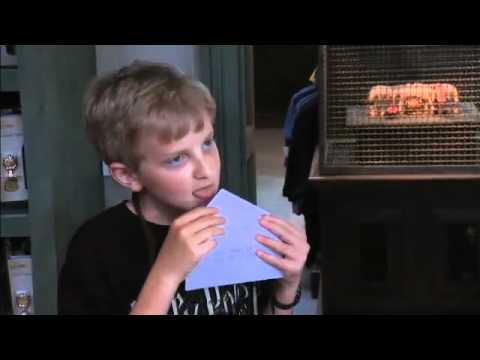 Ellen Experiences 'The Wizarding World of Harry Potter'!