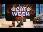 Ellen's 6th Annual Cat Week Is Here!