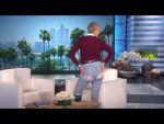 Ellen's Hiney Helper