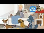 Ellen's Pet Dish with Miley
