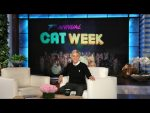 It's Ellen's 7th Annual Cat Week!