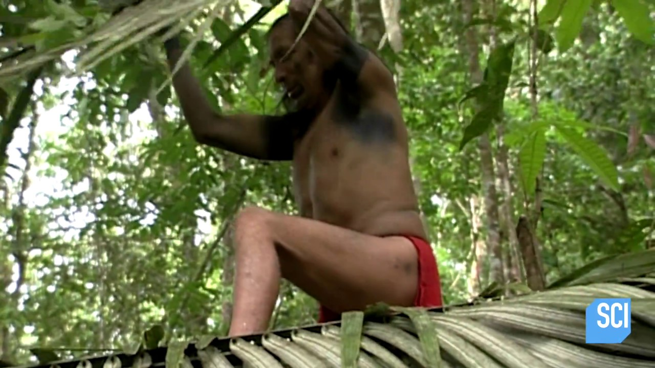 How Do The Amazon's Unseen Tribes Evade Detection? | Mysteries of the Missing