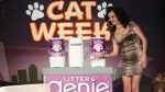 It's the 5th Annual Cat Week!