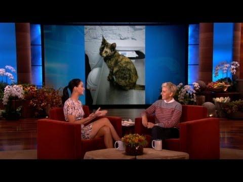 Jennifer Lawrence's New Cat
