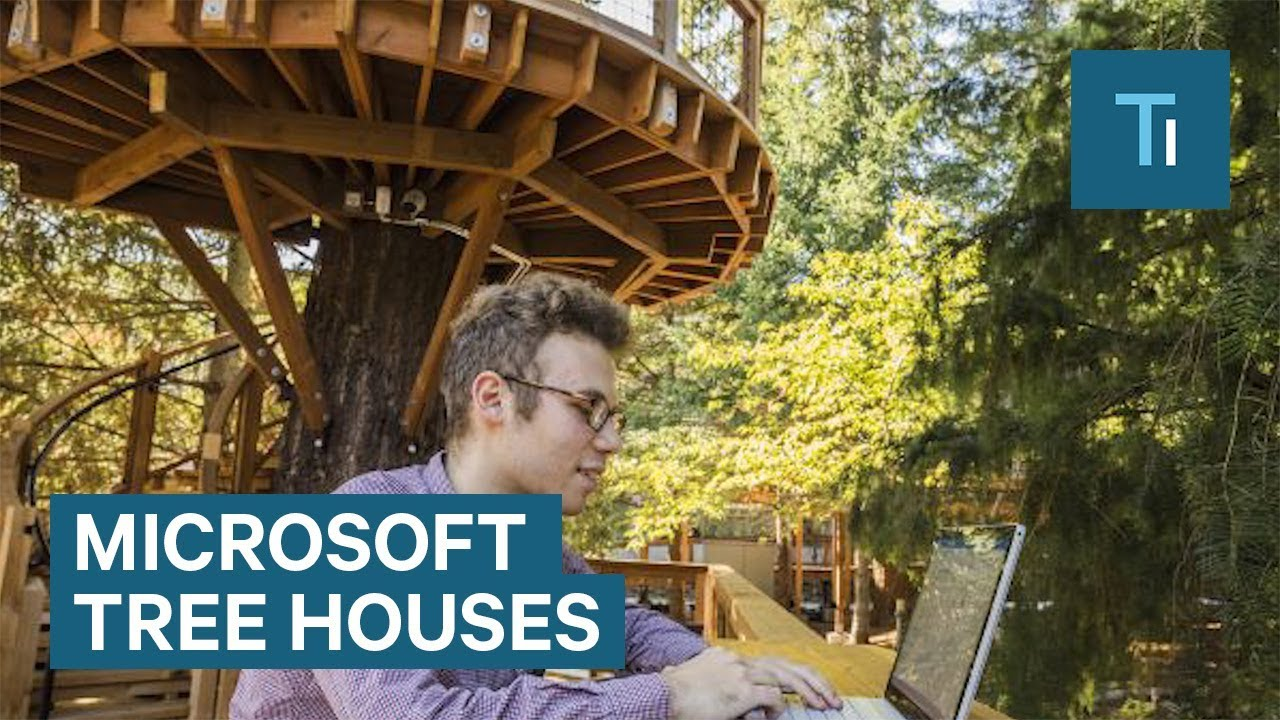 Microsoft's new tree houses are office spaces in the woods