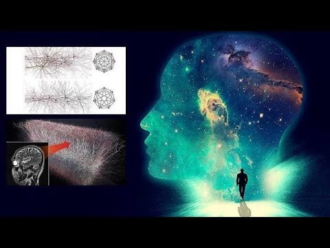 Scientists find a Multidimensional Universe inside our brain