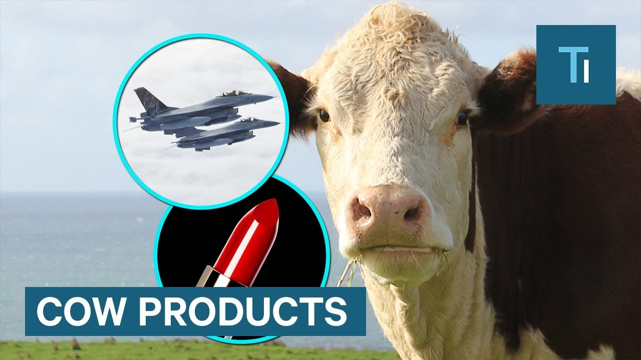 Products that are made with cow parts