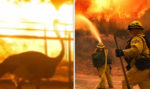 Holy Fire: California animals 'panic' as wildfire rips through state - video | World | News