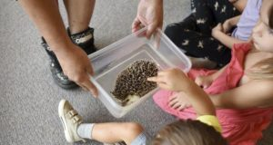 Slimey or spiny: Children visit with exotic animals | Local News