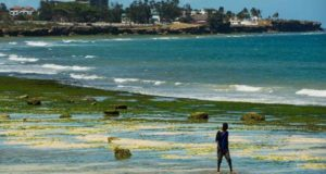 US warns on Tanzania travel