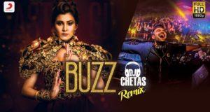 Aastha Gill - Buzz   Badshah   DJ Chetas Remix   Priyank Sharma