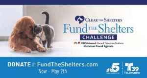 NBC 5 and Telemundo 39 Help North Texas Animal Shelters and Rescues Raise Funds