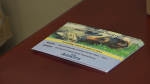 ANICIRA Adoption Center hosts donation drive for pet food pantry
