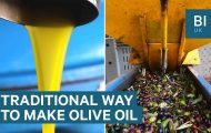 Inside a traditional Italian olive oil mill