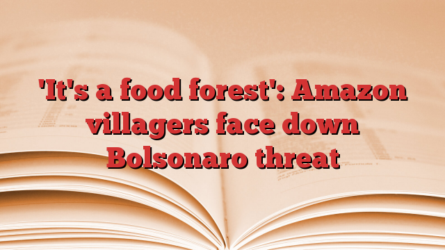 'It's a food forest': Amazon villagers face down Bolsonaro threat | Society