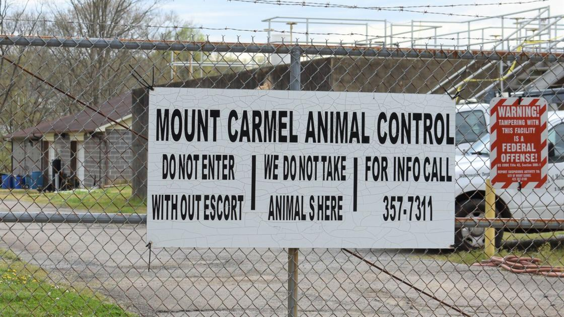 Watch Now: Mount Carmel shutting down city animal shelter after heated BMA discussion   Pets