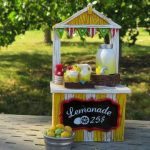 Through her lemonade stand, young San Antonio girl aims to raise funds for local animal rescues